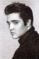 Elvis Photo Mosaic by whendt