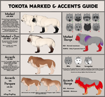 Tokotas: Marked and Accents guide by noebelle
