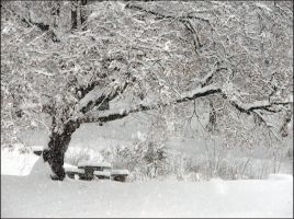 First Snow Of The Year In Which The World Must End by Knon