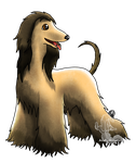 Afghan Hound by PulsingLights