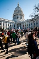 Madison, WI Protests 6 by cyspence