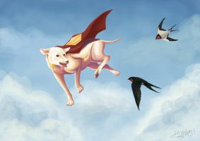 Krypto : Smell of the Sky by hitokaji
