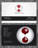 Business Card Wajid Sol by ahsanpervaiz