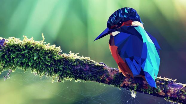 Just another tropical bird by RichAlmond