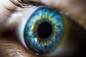 Eyeball macro 2 by adamchris1992