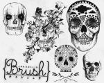 Skulls - Brush by coral-m