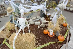 October 2014, Halloween At the Local Farm Stand 4 by Miss-Tbones
