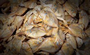 Dried fish. by jennystokes