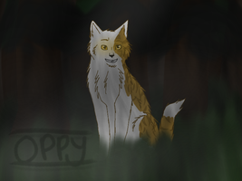 shadowclan territory-COM- by Optimistic-Chip