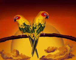 ::Parrots:: by Maniac-ani
