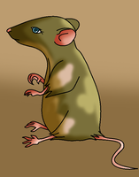 Melissa Mouse by I-Major-In-Magick