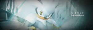 Silver The Hegehog Signature by darkfailure