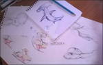 Traditional studies and sketches by ThePonika