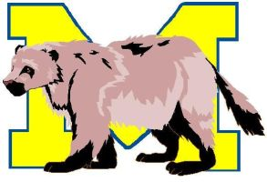 Michigan Wolverines by Meliss