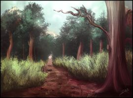 Forest Path by Andantonius