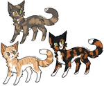 Foxsheart's Siblings :: BotS Adoptable NPC's by LousterDaRooster