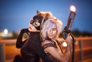 Catwoman and Devil May Cry by kevingreggain