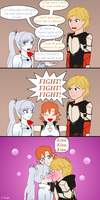 WhiteKnight - In a Nutshell by CyberTheHedgehog270