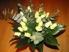 Beautiful white roses by Trea1969