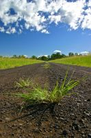 Long road ahead by theDexperience