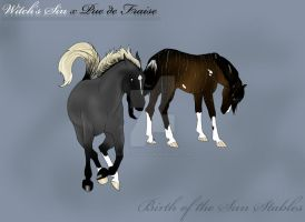 Witch's Sin x Pue de Fraise by SunsetRevelation