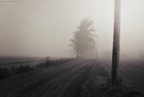 Foggy Morning II by EugenieA