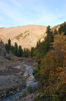 Lime Creek Fall by melly4260