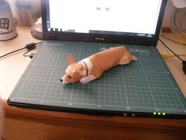 Corgi Papercraft by LutyBR
