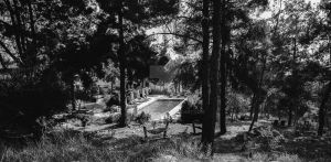 swimming pool in the woods by HaimKrasno