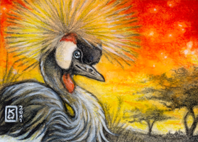 ACEO crowned crane by KonsiWagner