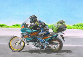 motorbike africa by Haster-Trenctown