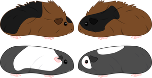 Guinea Pig Adopts (CLOSED) by demonreapergirl