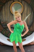 Typical Tinkerbell by DisneyLizzi