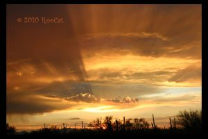 Golden Rays Monsoon Sunset by RooCat