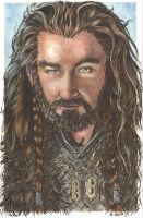 Thorin Oakenshield from the Hobbit by ssava