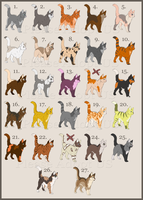Cat Adoptables 7 [OPEN] by PleaseAdoptUs
