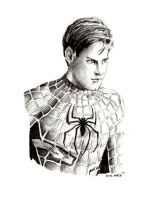 Tobey Maguire - Spiderman by Deinslef