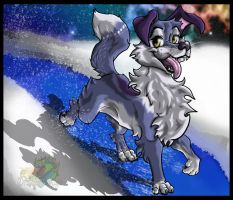 Flash in the snow by Zecon