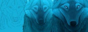 Stages of creation - Facebook page cover by LabradoriteWolf