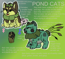 Pond Cats by D0GROTT