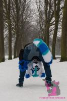 Silly Korra by FurryFursuitMaker