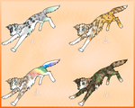 Canine adoptables | Merle Whippets | OPEN by Aussienka
