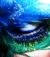 Colour Play - The Peacock II by noaeuve
