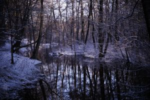 Winterland by UlfStubbe