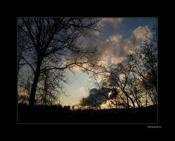 To Look to the Clouds by rici66