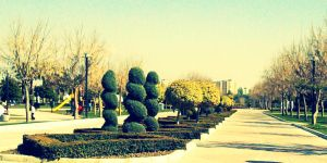 Adana World Park by qimoo