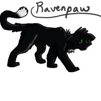 4. Ravenpaw by GingerFlight