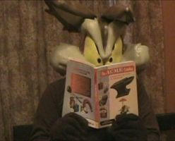 Checking out the ACME catalog by WileE2005
