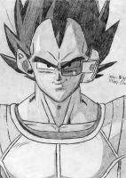 AP02: Vegeta by KirbySnacks