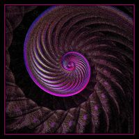 Spiral Inc. by heyday93